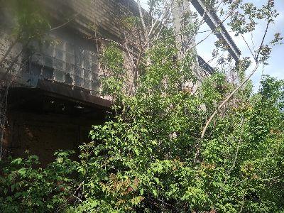 Коммерческая недвижимость склада, ангара 700 м² в Каменском на Аношкина Проспект | Hiworking.com